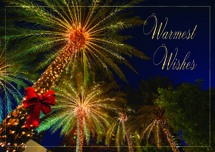 Tropical Wishes Holiday Cards